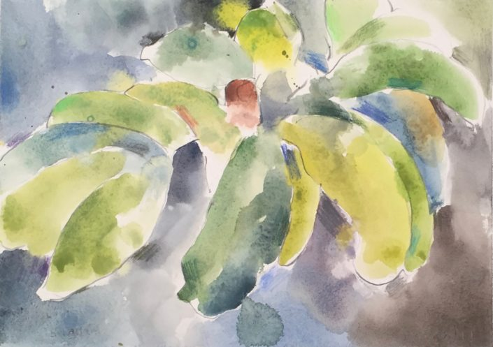Banana 1 by George Woollard